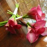 pink mini calla lily bridesmaids bouquets