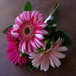 pink gerbera daisy bridesmaid bouquet